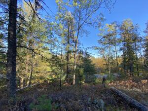 Most of the property is plateaued behind a ridge line. Nice elevation can provide peek views of the lake with a tall enough home
