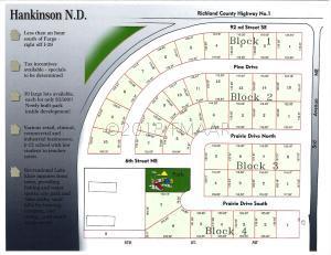 206 PRAIRIE Drive N, Hankinson, ND 58041