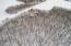 18501 ERICKSON Road, Audubon, MN 56511