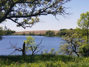 LOT 1 BLK1 THE SHORES ON BOYER LAKE, Lake Park, MN 56554