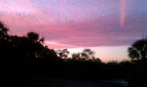8455 Governors Way, Hobe Sound, FL 33455