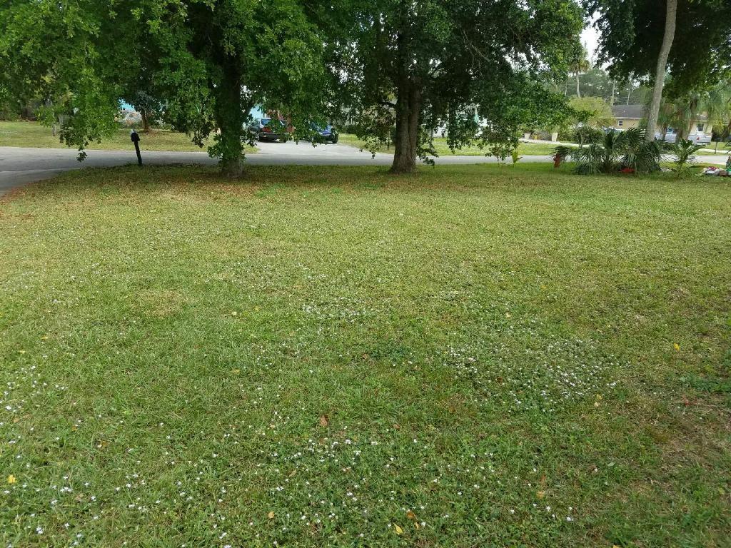 167  Highland Park Drive  For Sale 10293253, FL