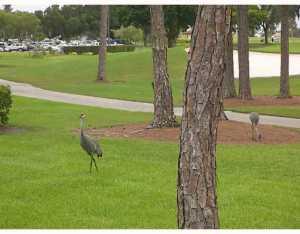526 Club Drive, Palm Beach Gardens, FL 33418