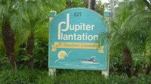 Jupiter Plantation