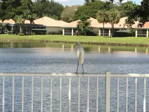 146 E Tall Oaks Circle, Palm Beach Gardens, FL 33410