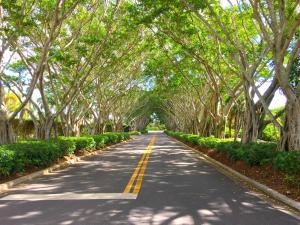 8403 Ironhorse Court, West Palm Beach, FL 33412