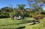 Oversized lot with fire pit, room for tiki bar or large garden to west of pool