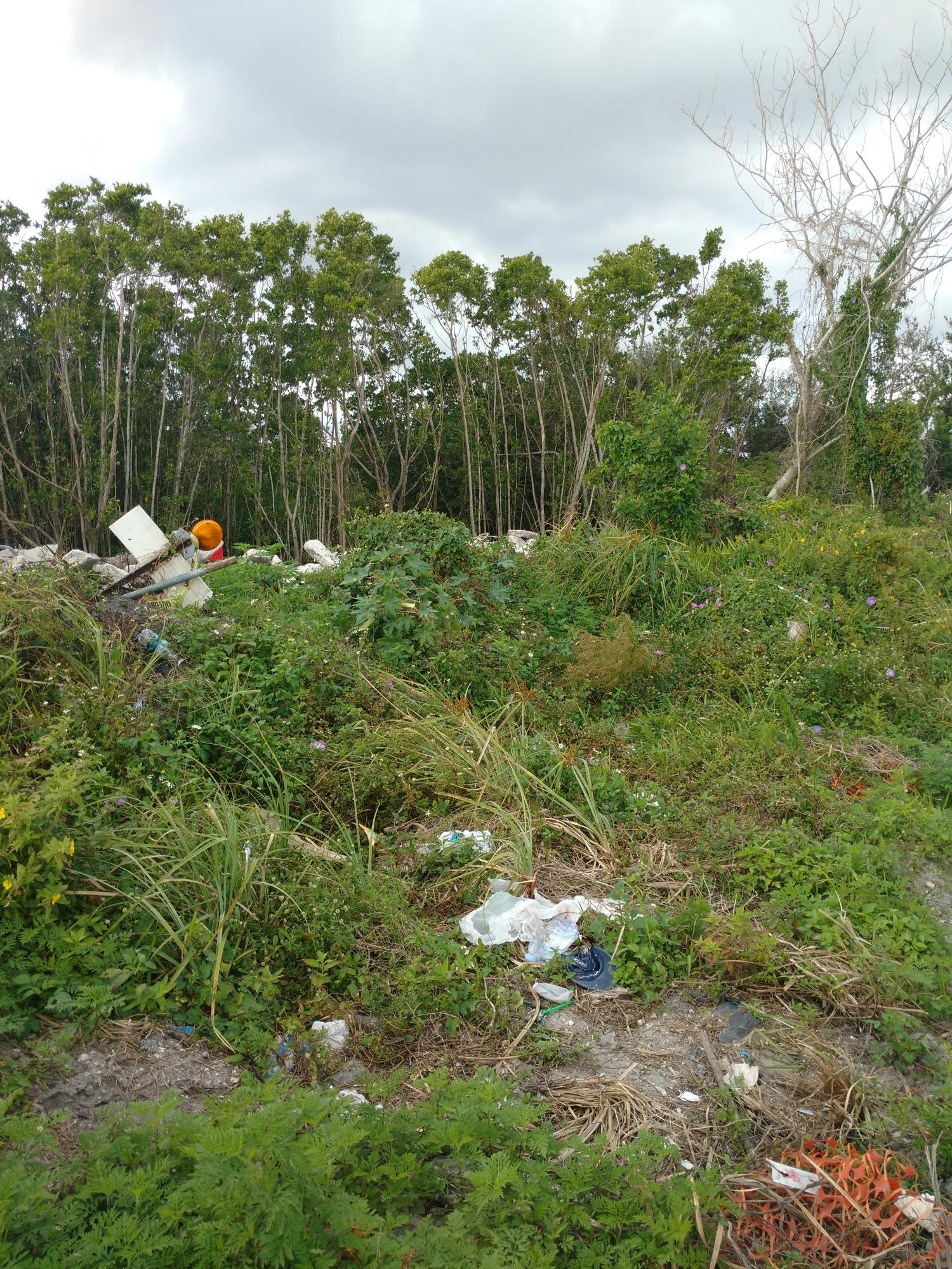 Property needs developed, Five plus acres in thee heart of Hollywood, RS-6, Possible waterway access go to intra coastal, partially cleared. Around the corner from a major shopping area.