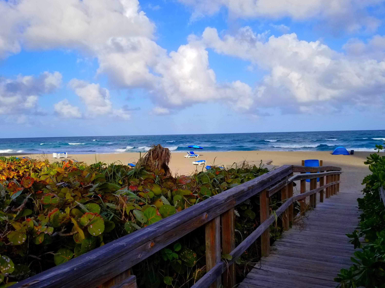 Palm beach hookup