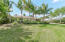 Beautiful lawn with mature coconut trees.
