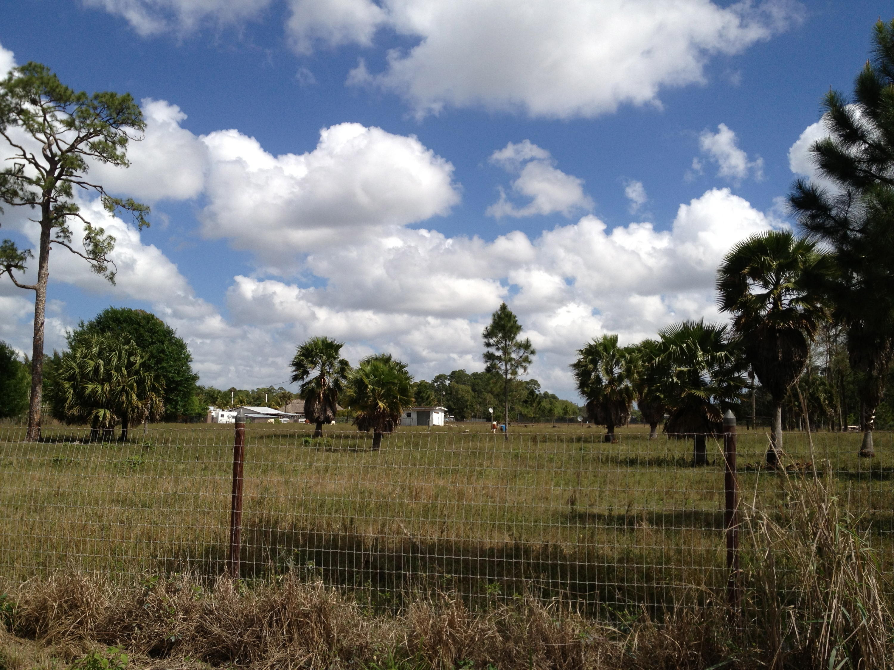 Xxx 15th Drive, Loxahatchee Groves, Florida 33470, ,Land,For Sale,15th,RX-10422558