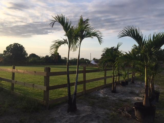 00000 Simone Drive, Loxahatchee, Florida 33470, ,Land,For Sale,Simone,RX-10433107