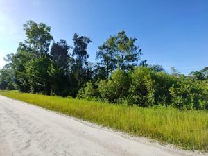 12281 157th (Lot E 1/2 B59), Jupiter, FL 33478