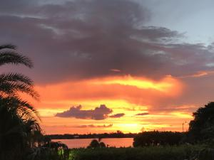 Romantic sunsets set the stage for a happy holiday retreat here at the pet-friendly Dorchester of Palm Beach!