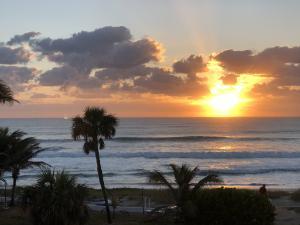 1041 Hillsboro Mile Hillsboro Beach FL 33062