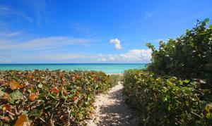 Private Path to Beach