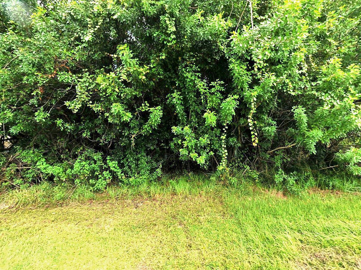 431 Baoy Street, Port Saint Lucie, Florida 34953, ,Land,For Sale,Baoy,RX-10483119