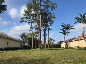 471 Pine Tree Court