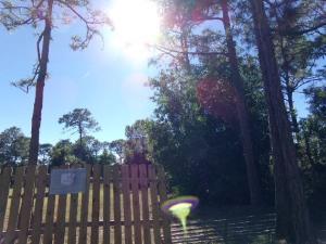 12356 Sandy Run Road, Jupiter, FL 33478