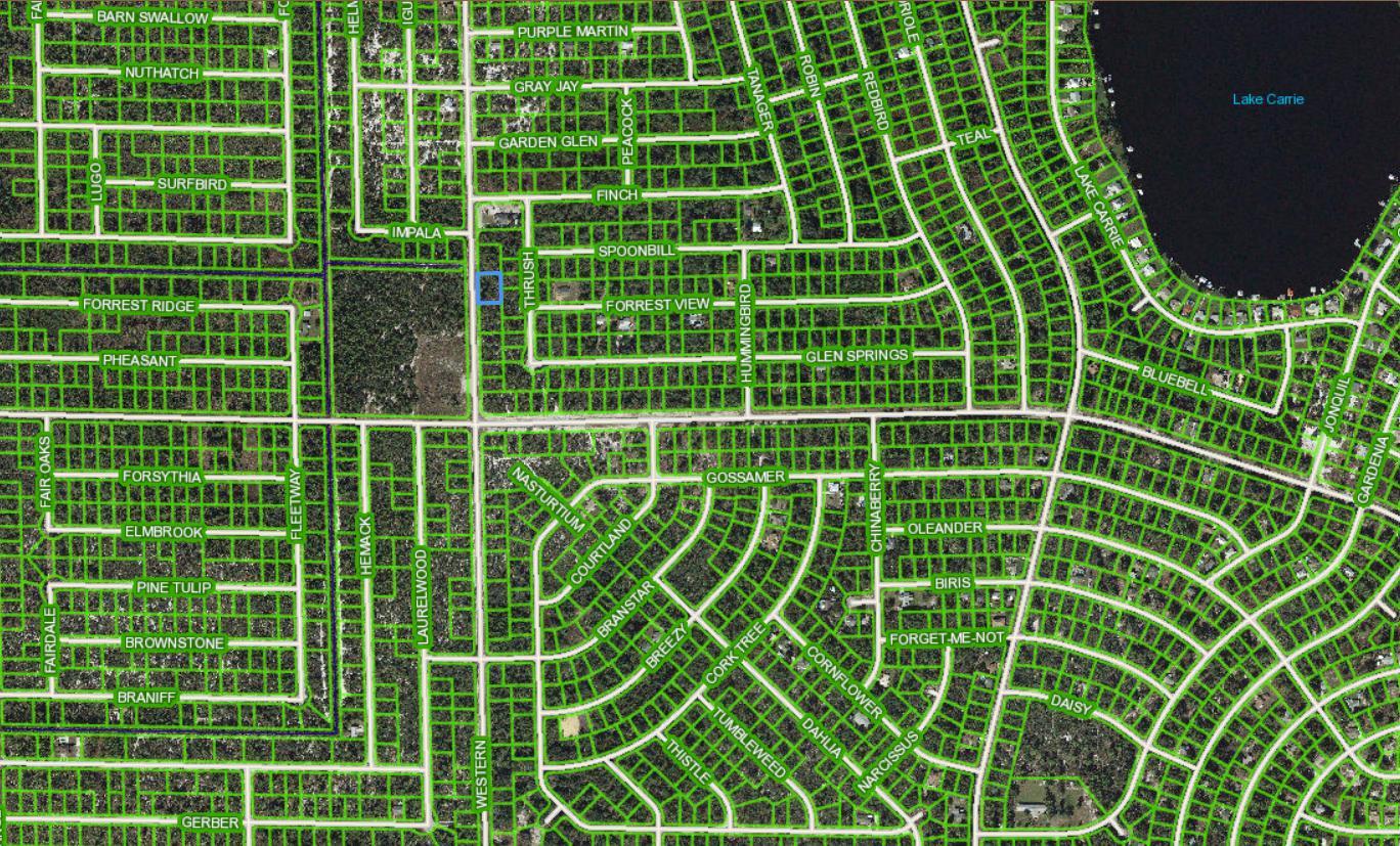 1017 Western Boulevard, Lake Placid, Florida 33852, ,Land,For Sale,Western,RX-10501158