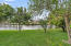 Picturesque view of Water and Fruit Trees in Backyard