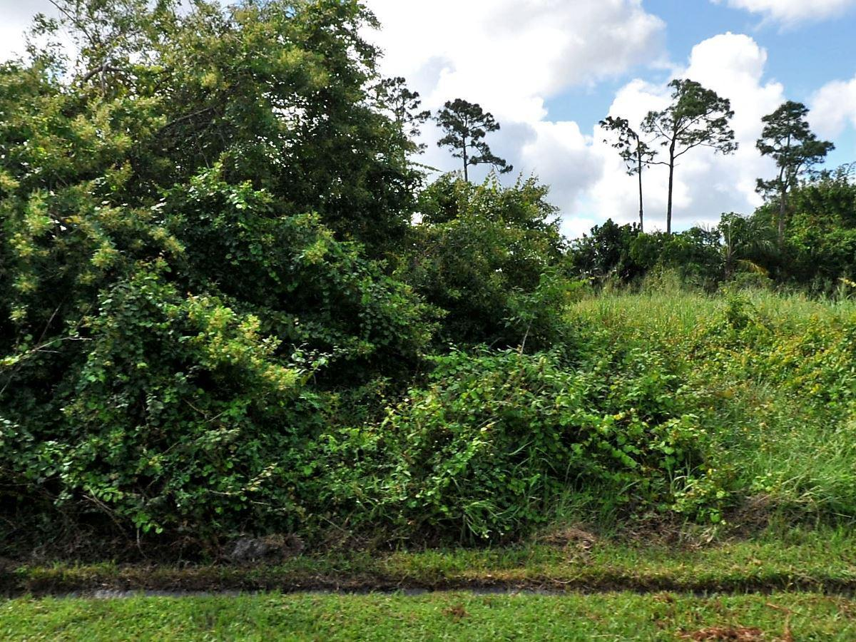 772 Sweetbay Avenue, Port Saint Lucie, Florida 34983, ,Land,For Sale,Sweetbay,RX-10525751