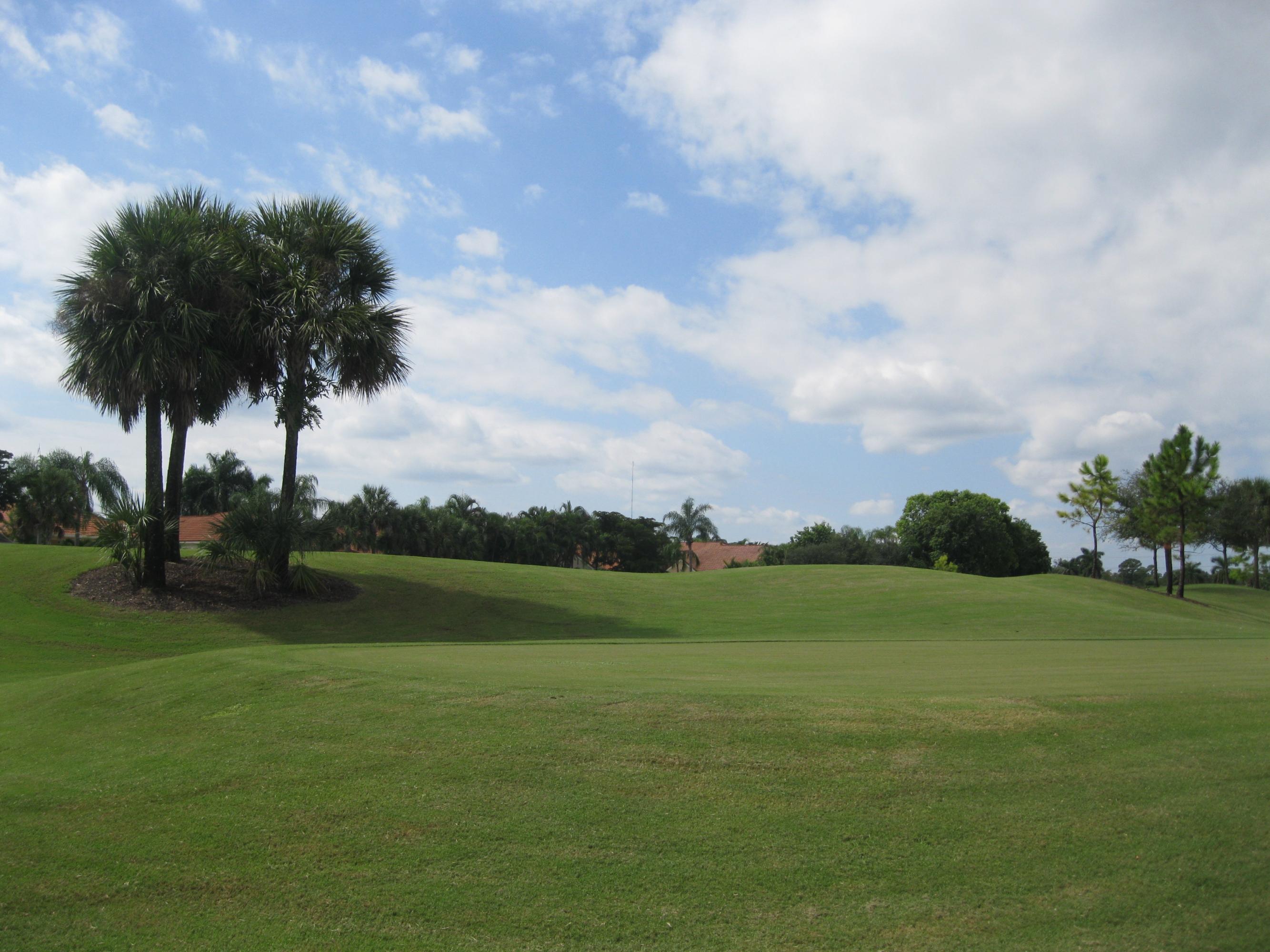 10670 Greenbriar Villa Drive Wellington FL 33449