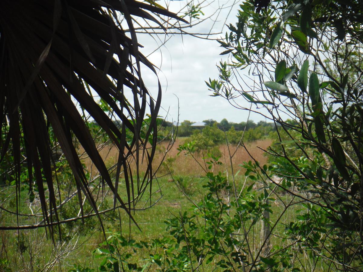 Carlton Road Port Saint Lucie FL 34987