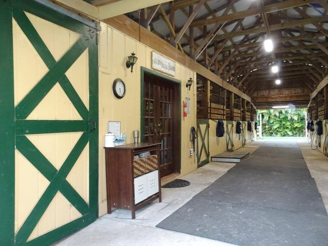 14101 Collecting Canal (Barn Lease) Road, Loxahatchee Groves, Florida 33470, ,1 BathroomBathrooms,Barn,For Rent,Collecting Canal (Barn Lease),1,RX-10541245