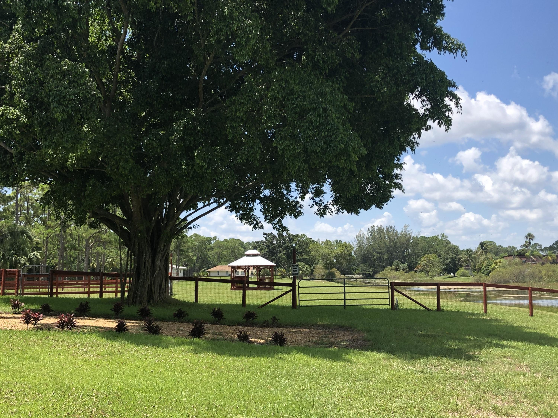 10532 Pinewood Trail, Jupiter, Florida 33478, ,Land,For Sale,Pinewood,RX-10537468