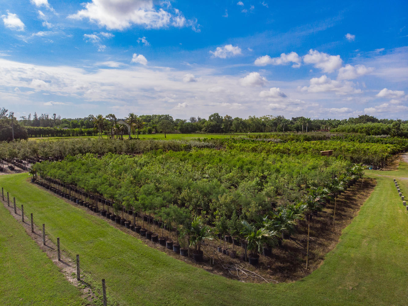 16424 Van Gogh Road, Loxahatchee, Florida 33470, ,Land,For Sale,Van Gogh,RX-10544548