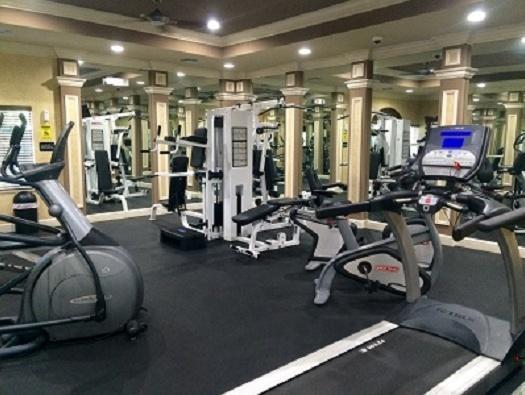 12516 Equine Lane, Wellington, Florida 33414, 5 Bedrooms Bedrooms, ,4.1 BathroomsBathrooms,Single Family,For Sale,Equestrian Club,Equine,RX-10544023