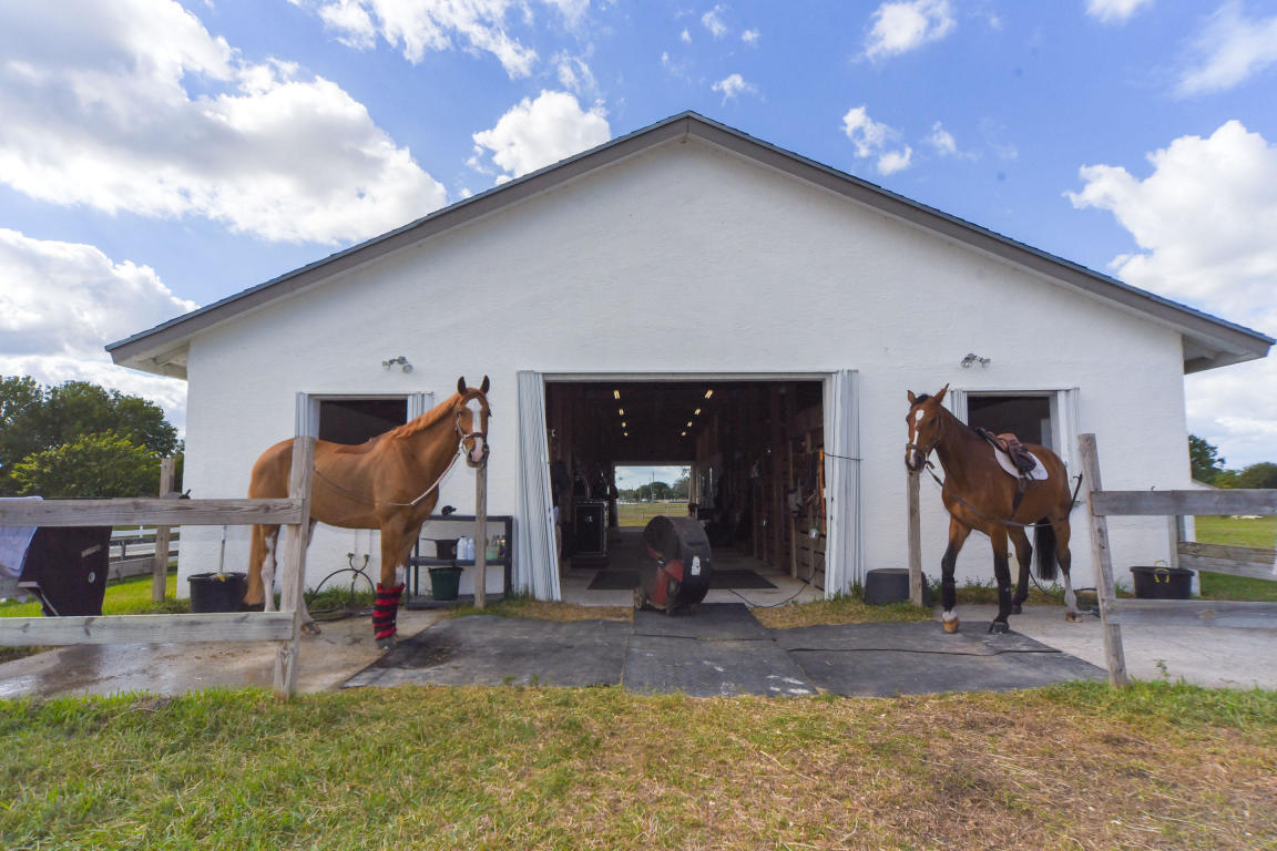 2808 Appaloosa Trail, Wellington, Florida 33414, ,Barn,For Rent,Appaloosa,RX-10544384