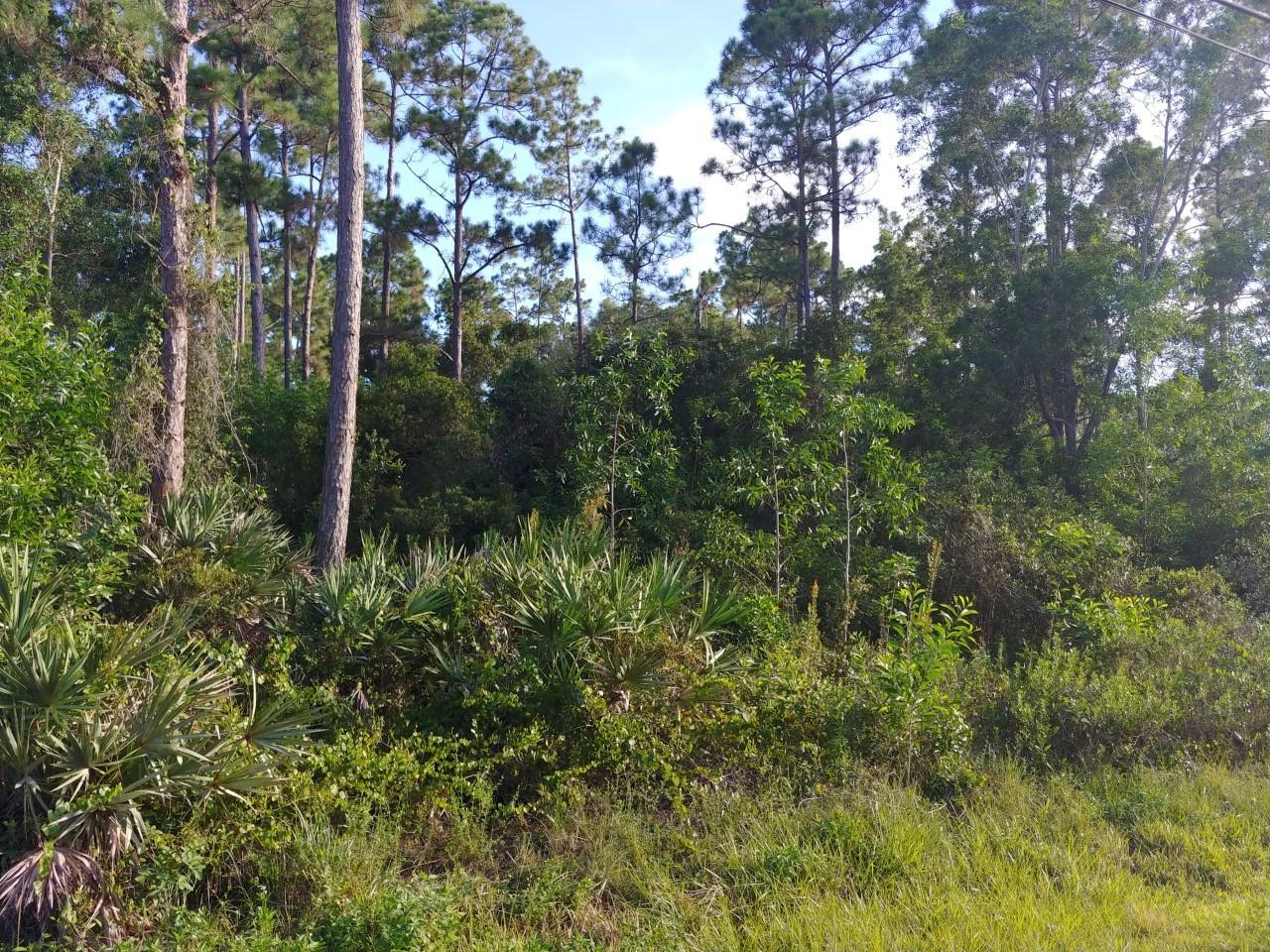 Lot R-463 150th, Jupiter, Florida 33478, ,Land,For Sale,Jupiter Farms,150th,RX-10547114