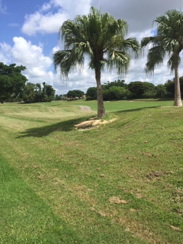 2554 Players Court, Wellington, Florida 33414, 3 Bedrooms Bedrooms, ,3 BathroomsBathrooms,Single Family,For Sale,Palm Beach Polo,Players,RX-10552555