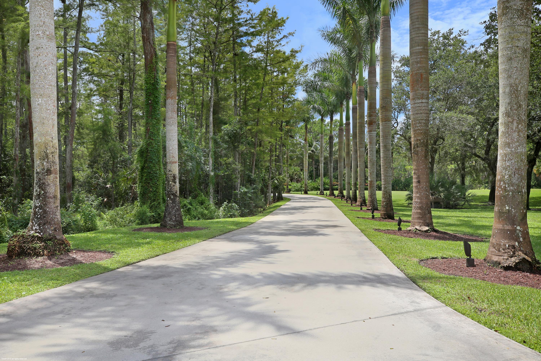 11351 Alligator Trail