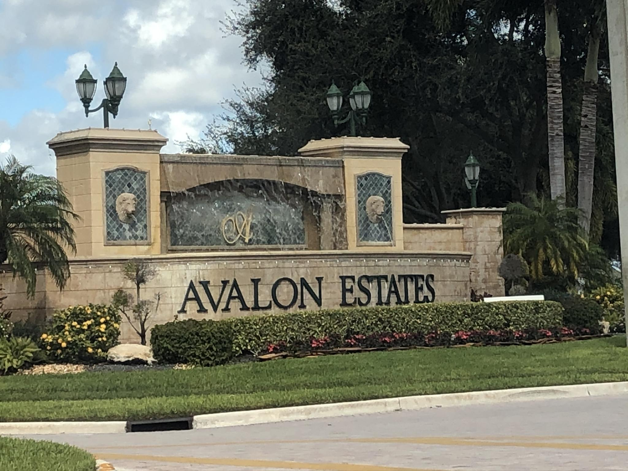Super private oversize pie shaped lot overlooking stunning waterfront views. Avalon is like a resort. Remodeled clubhouse, billiards, craft rooms, unique pool, tennis, pickle ball, hot tub, sauna, and many more resort style amenities. 55+ community. Sold As Is condition. No survey/Disclosures. Proof of funds must accompany all offers. Addendum required after acceptance. EM must be Cert Funds. Rooms, lotsize/details/HOA info not grntd. Property in Auction, all auction terms apply. Buyer responsible for past due HOA fees if any.