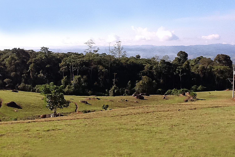 000000 000000000, San Isidro, Costa Rica 00000, ,Land,For Sale,Quintas Bernina,000000000,RX-10597130