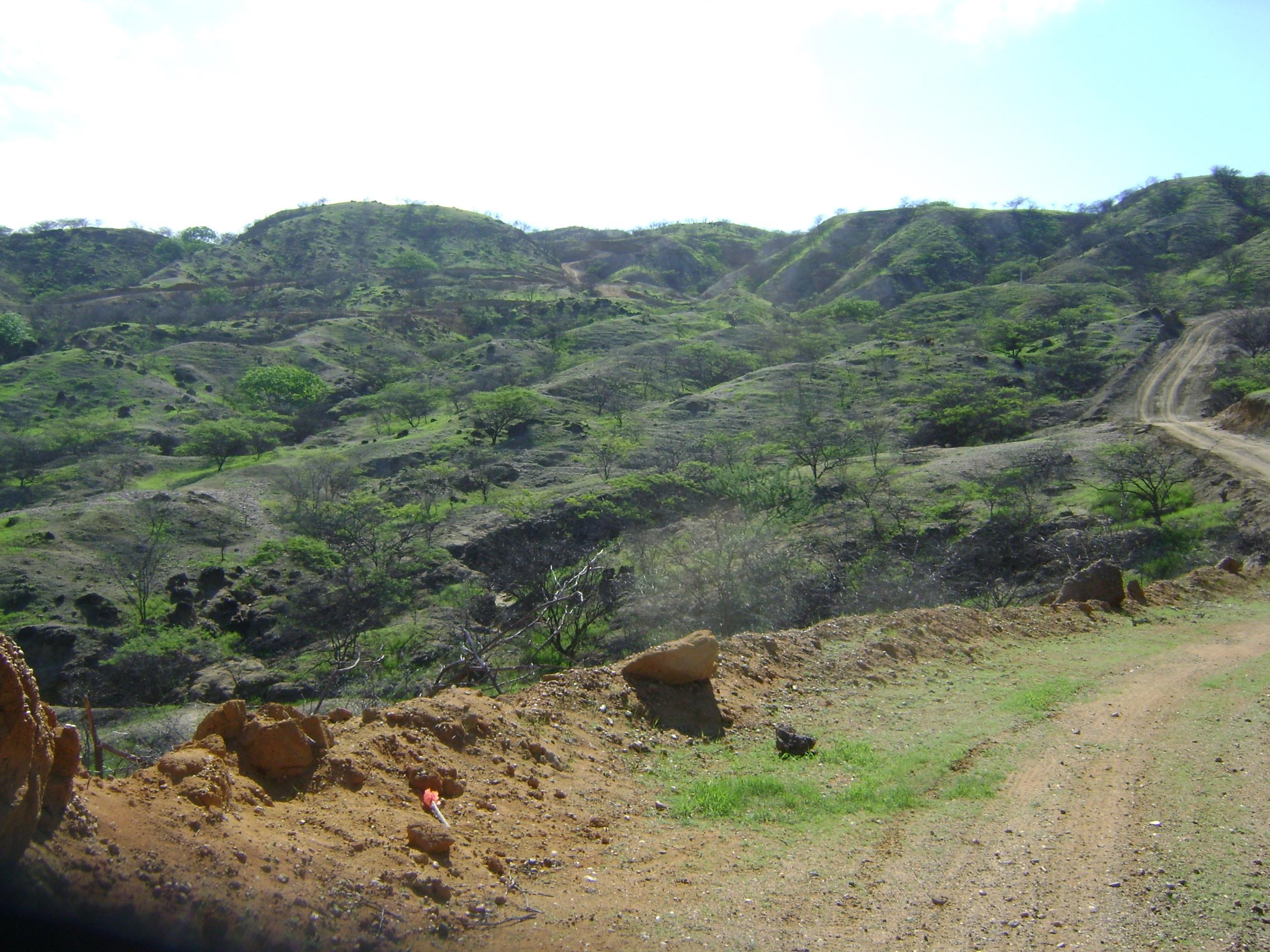 Road towards Falcon Canyons