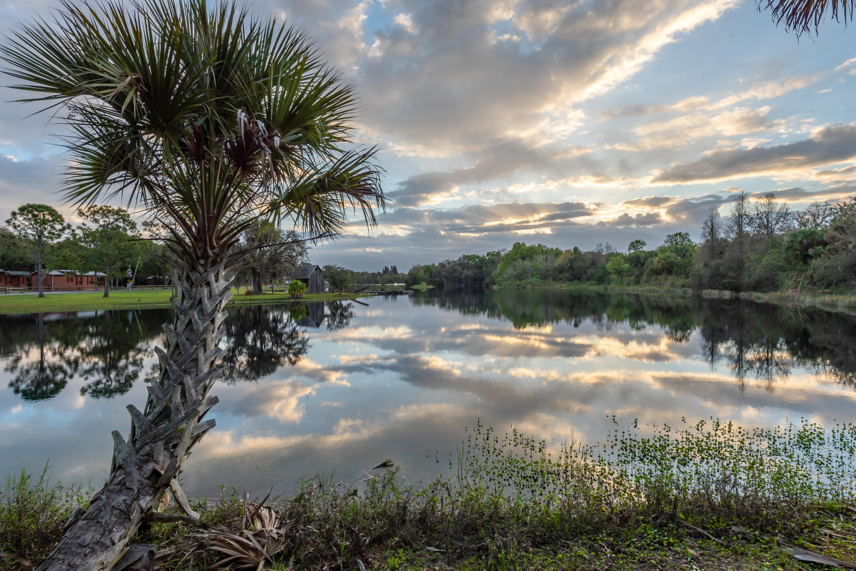 12399 224th Street, Okeechobee, Florida 34972, ,for Sale,224th,RX-10619978, , , ,for Sale