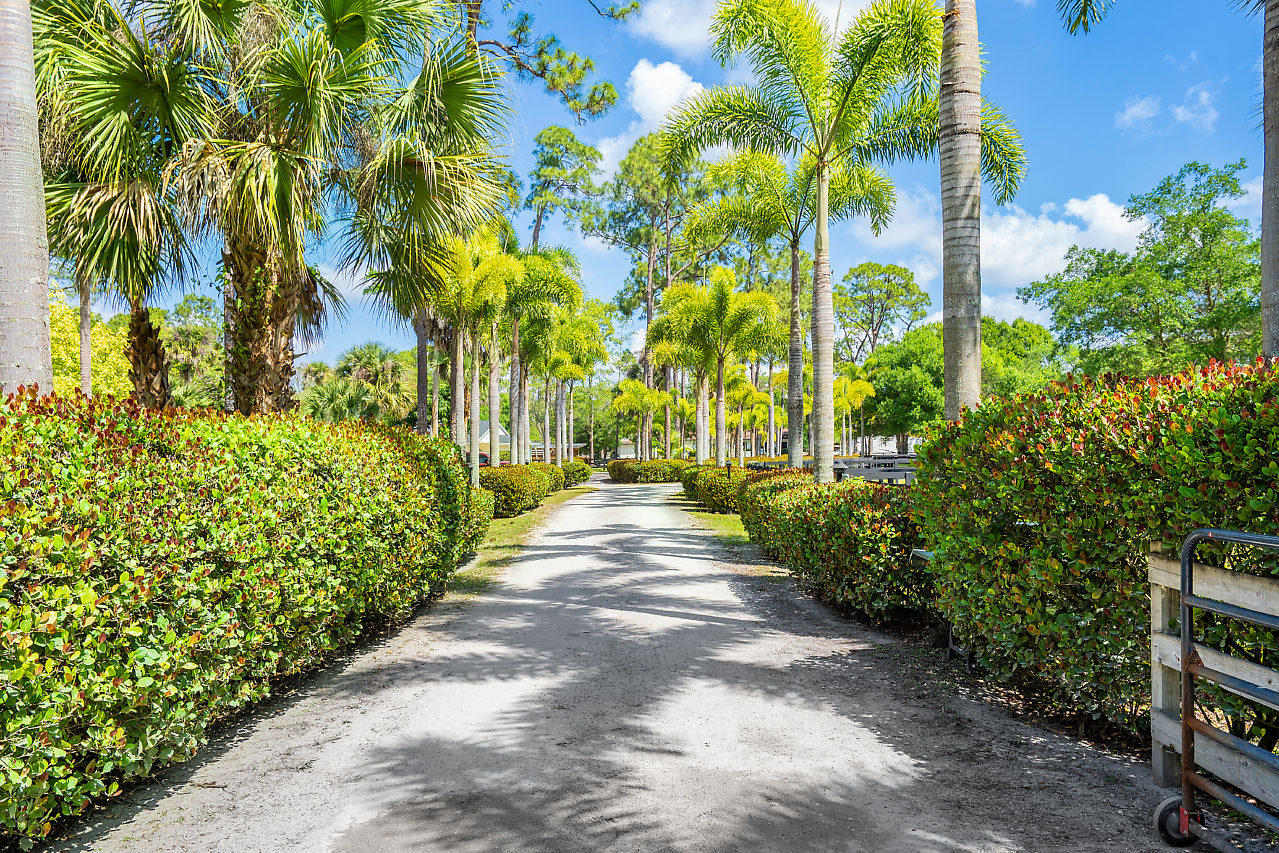 Loxahatchee Groves, Florida 33470, 3 Bedrooms Bedrooms, ,3 BathroomsBathrooms,Residential,For Sale,Citrus,RX-10620947