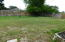 Almost completely fenced rear yard...great for pets or kids. Not shown is Shed