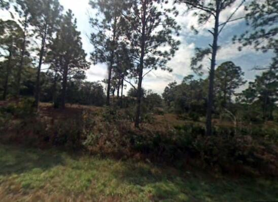 Home for sale in PLACID LAKES Lake Placid Florida