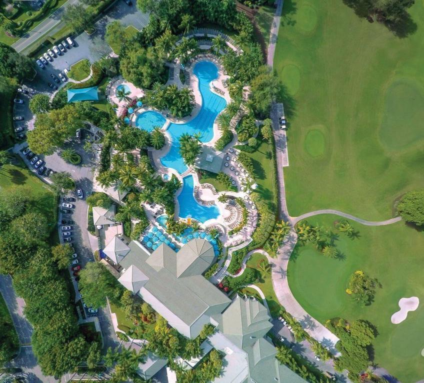 Pool Aerial shot