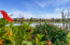 Complementing your luscious lake views are beautiful Florida flowering bushes