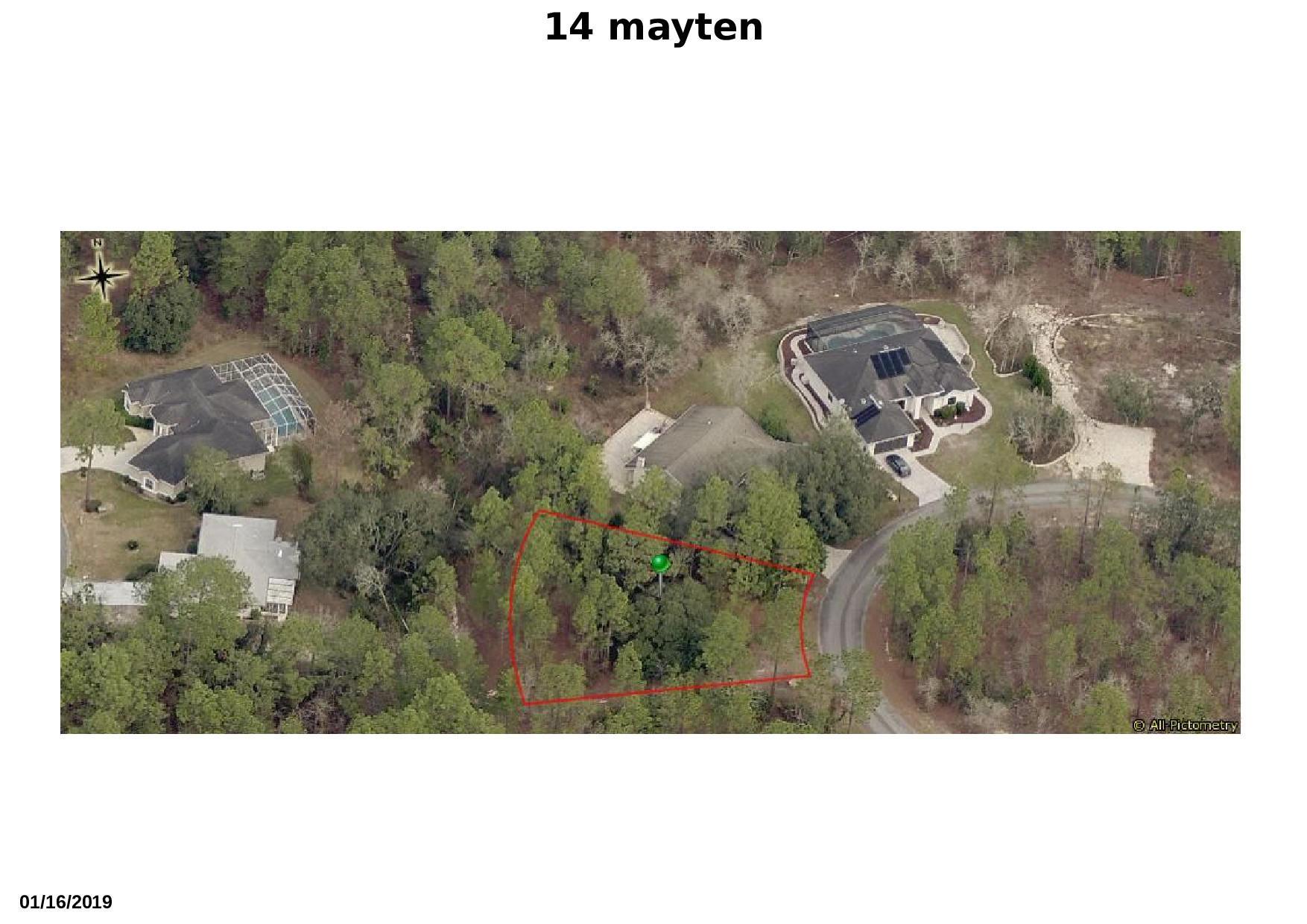14 mayten 1