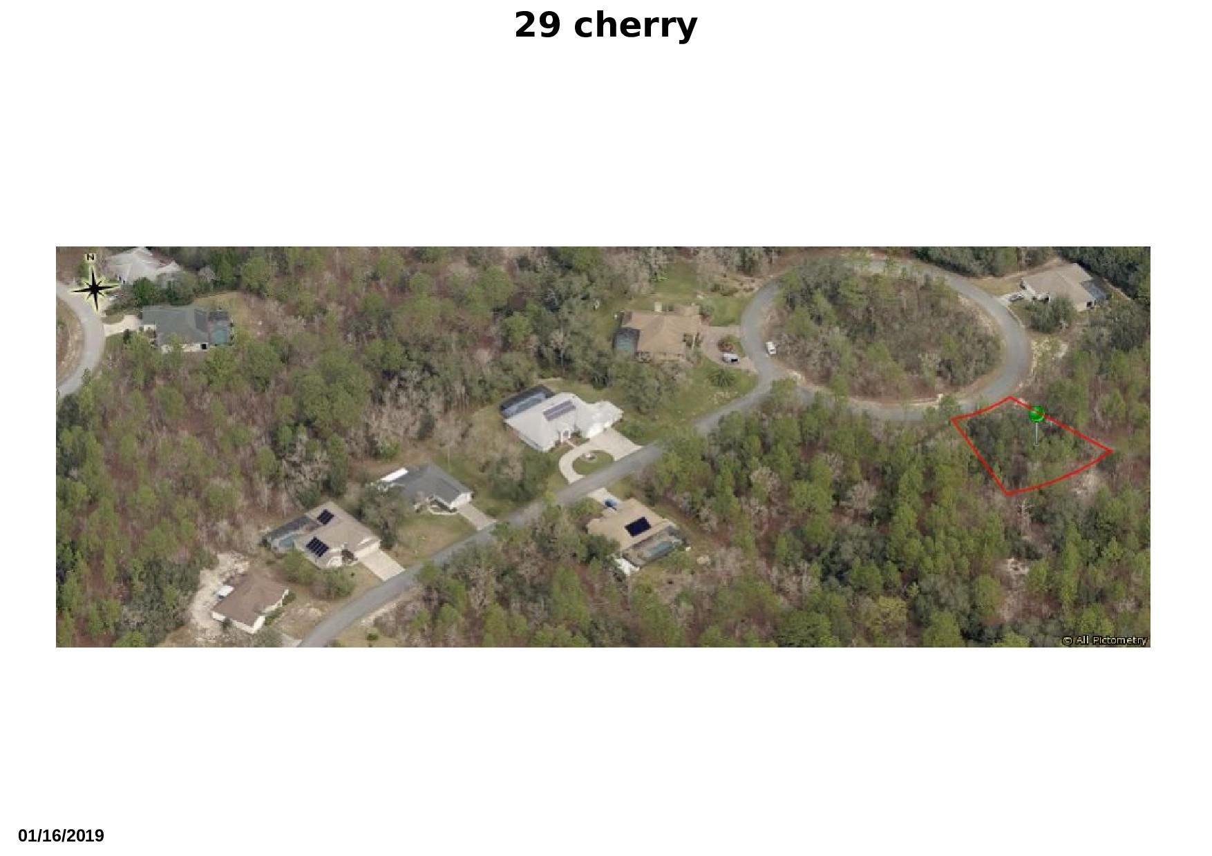 29 cherrypalm 3 redone