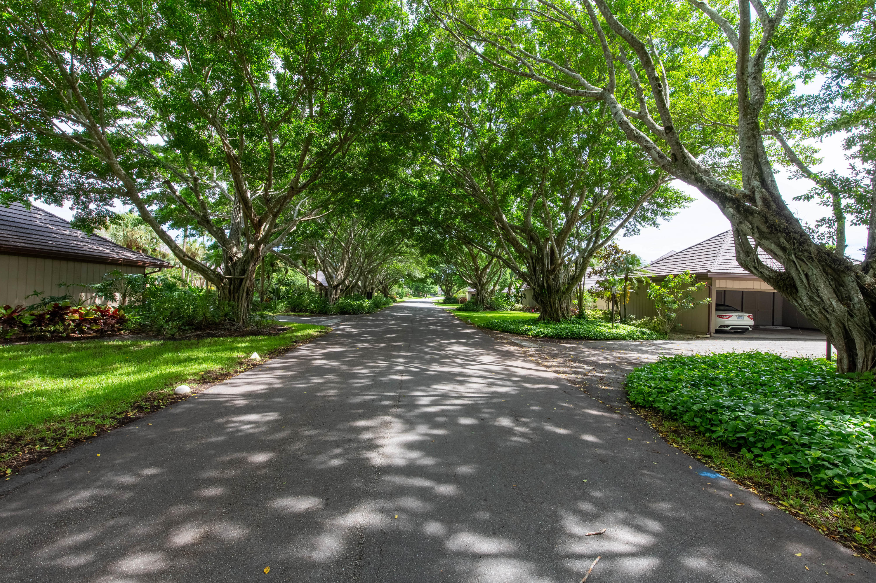 Wellington, Florida 33414, 2 Bedrooms Bedrooms, ,2 BathroomsBathrooms,Residential,For Sale,Polo Island,RX-10646777