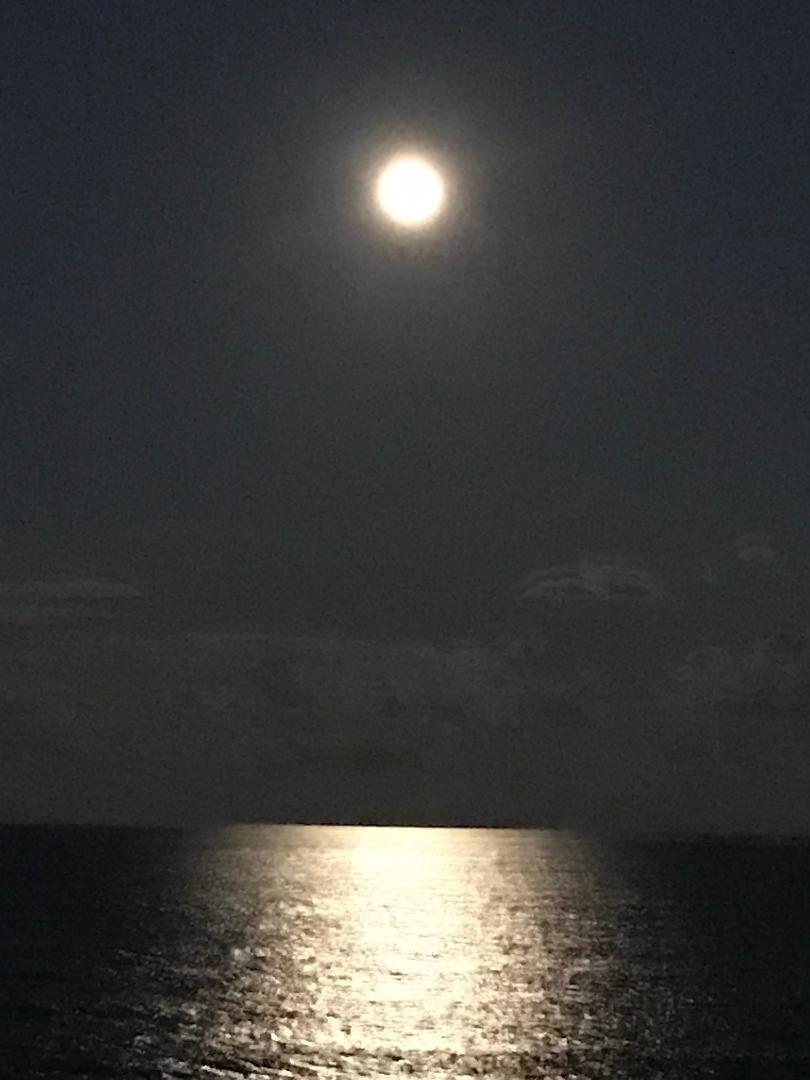 Image 114 For 5250 Ocean Drive N 8-n