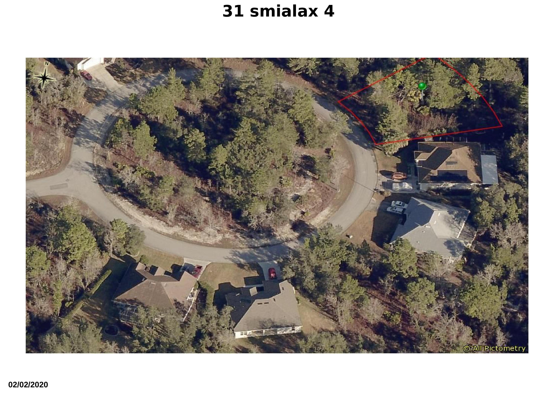 31 smilax 4
